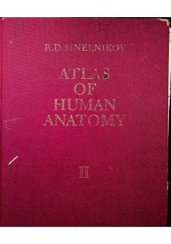 Atlas of Human Anatomy Tom II