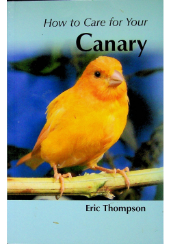 How to care for your canary