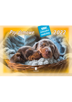 Kalendarz  2022 WL08 Psy domowe Kalendarz rodzinny