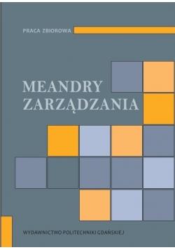 Meandry zarządzania