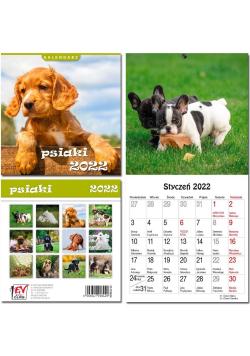 Kalendarz 2022 13 plansz Psiaki