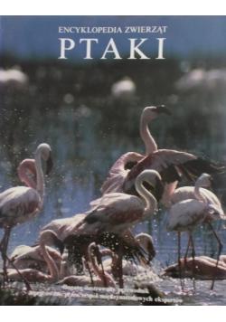 Encyklopedia zwierząt Ptaki