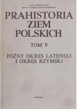 Prahistoria ziem polskich Tom V