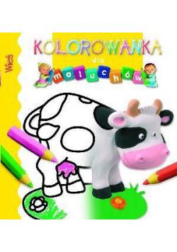 Kolorowanka dla maluchów - Wieś