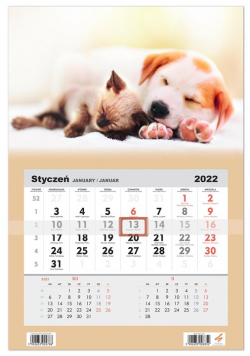 Kalendarz ścienny 2022 jednodzielny Pies i Kot