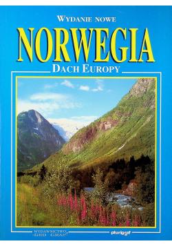 Norwegia dach Europy