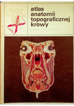 Atlas anatomii topograficznej krowy