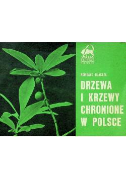 Drzewa i krzewy chronione w Polsce