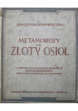 Metamorfozy albo Złoty Osioł 1925 r