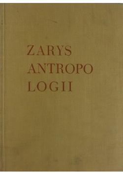 Zarys antropologii