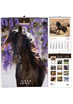 Kalendarz 2022 B3 13 plansz Konie