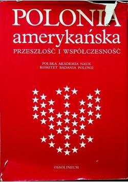 Polonia amerykańska przeszłość i współczesność