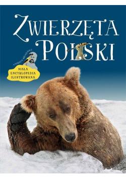 Zwierzęta Polski. Mała encyklopedia ilustrowana