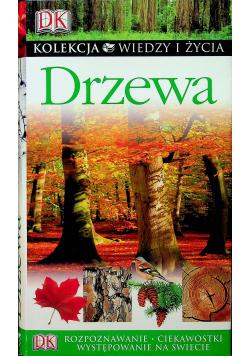 Kolekcja wiedzy i życia drzewa
