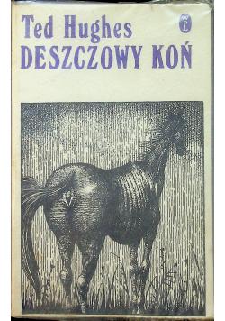 Deszczowy koń