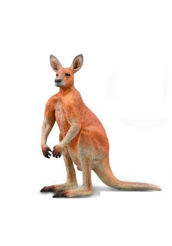 Red Canguro małe