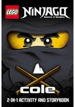 Ninjago masters of Spinjitzu Cole