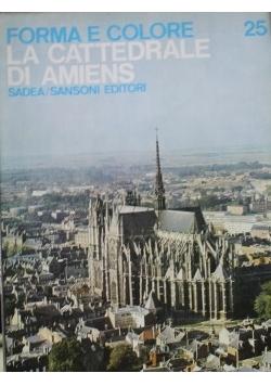 Forma e colore la Cattedrale di Amiens