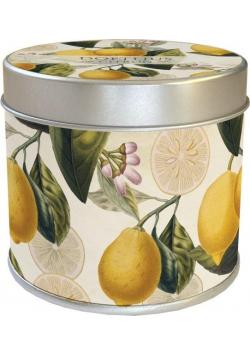 Zapachowa świeczka 158 - motyle - zapach cytrynowy
