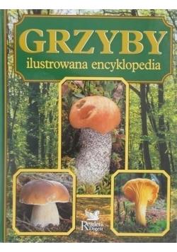 Grzyby Ilustrowana encyklopedia