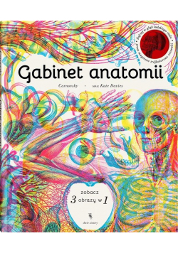 Gabinet anatomii w.2
