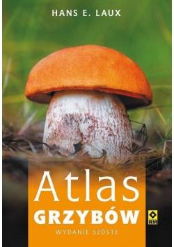 Atlas grzybów w.4