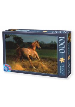 Puzzle 1000 Galopujący koń