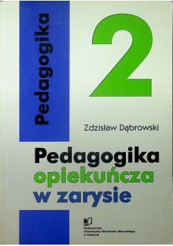 Pedagogika opiekuńcza w zarysie 2 tom