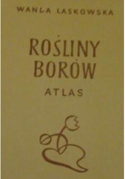 Rośliny Borów atlas