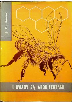 I owady są architektami
