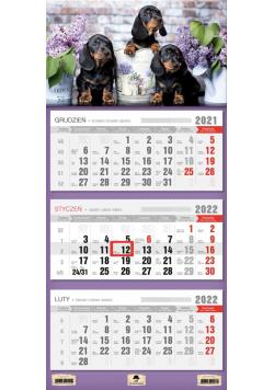 Kalendarz 2022 trójdzielny Pieski