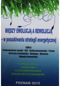 Między ewolucją a rewolucją w poszukiwaniu strategii energetycznej Tom II