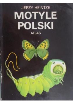 Motyle polski atlas