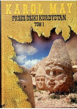 Przez dziki Kurdystan tom 1