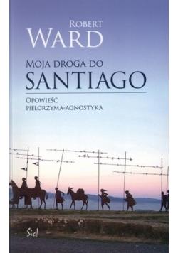 Moja droga do Santiago