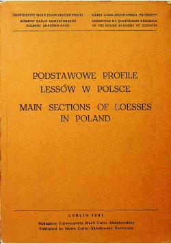 Podstawowe profile lessów w Polsce