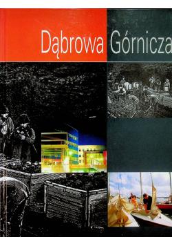 Dąbrowa Górnicza