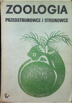 Zoologia Przedstrunowce i strunowce