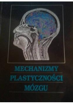 Mechanizmy plastyczności mózgu