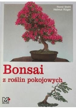 Bonsai z roślin pokojowych