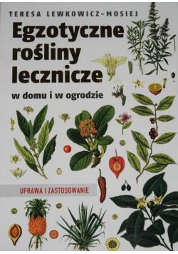 Egzotyczne rośliny lecznicze