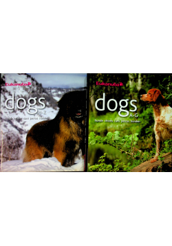 Dogs 2 tomy