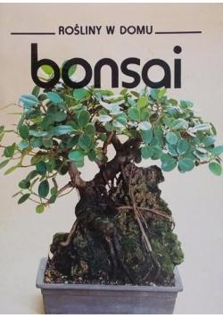 Rośliny w domu bonsai