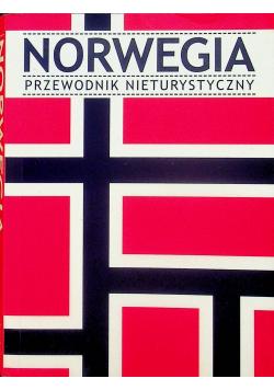 Norwegia Przewodnik nieturystyczny