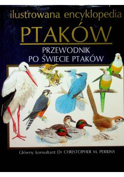 Ilustrowana encyklopedia ptaków przewodnik po świecie ptaków