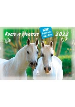 Kalendarz 2022 WL10 Konie w plenerze Kalendarz rodzinny