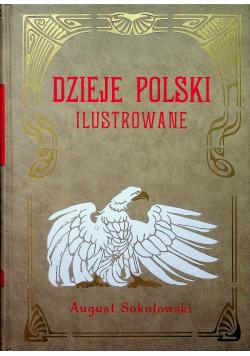 Dzieje Polski ilustrowane tom IV reprint z 1904 r