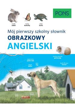 Słownik obrazkowy szkolny angielski