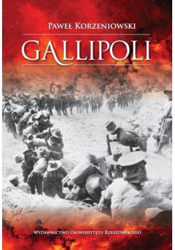 Gallipoli Działania wojsk Ententy na półwyspie Gallipoli w 1915 roku