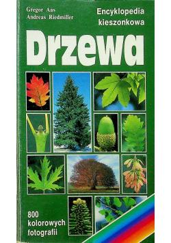 Drzewa Encyklopedia kieszonkowa